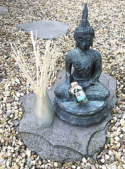 WLTP-Diffuser-met-Buddha